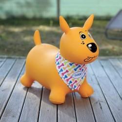 Ludi - Mon chien sauteur jaune